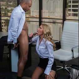 Sloan Rider に 'Naughty America' gets dicked down by employee's big black cock (サムネイル 16)